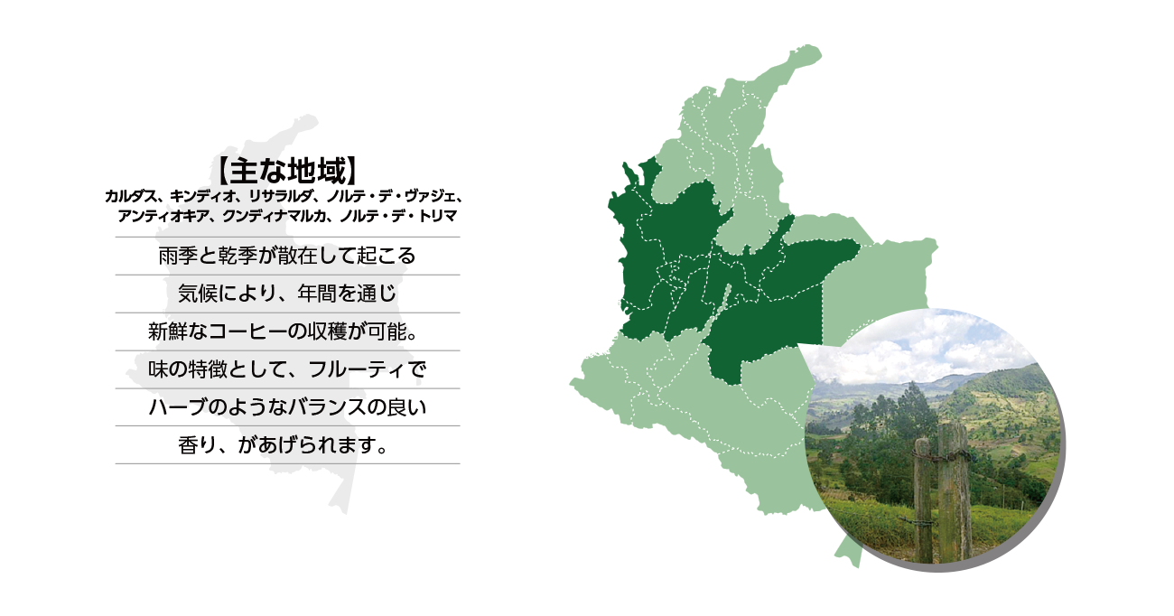https://mikado-coffee.com/wp-content/uploads/2020/06/colombia_m11.png